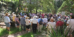 Battle to Preserve the Byles Creek Wildlife Corridor
