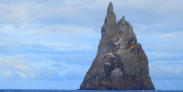 Lord Howe Island Rodent Eradication Declared a Success