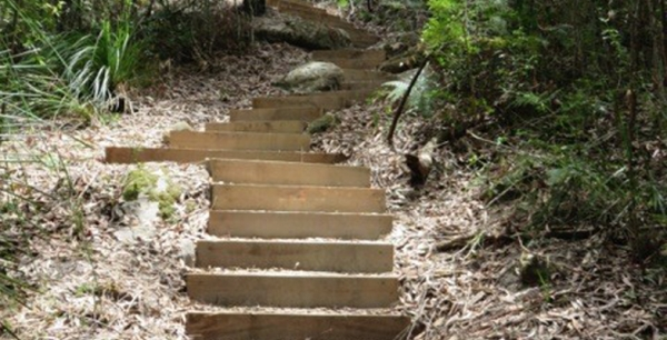 New Steps on STEP Track