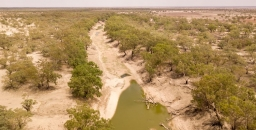 Murray-Darling Basin Plan: Too Little, Too Late